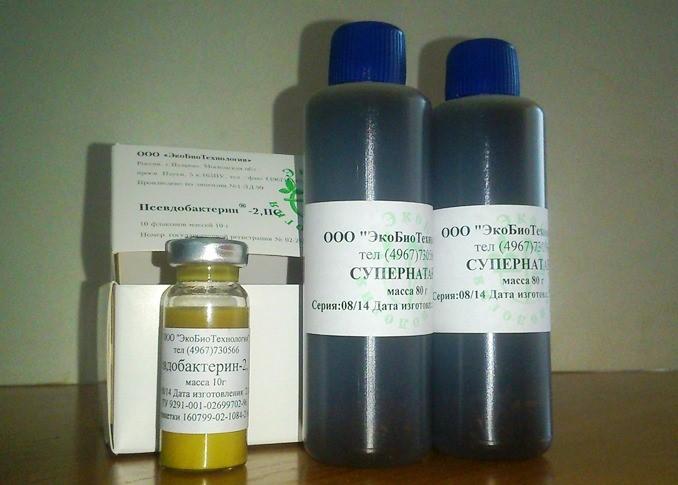 Псевдобактерин-2
